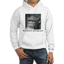 Remembrance of Things Past Hoodie