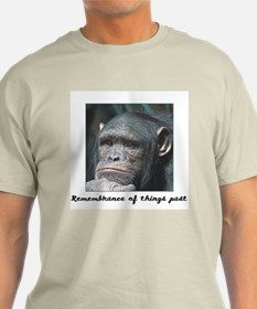 Remembrance of Things Past Ash Grey T-Shirt