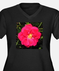 Wild Rose in Spring Plus Size T-Shirt