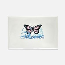 Cute Lupus Rectangle Magnet (100 pack)