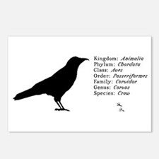 crow Postcards (Package of 8)