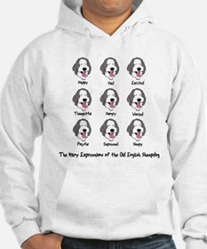 OES Expressions Hoodie
