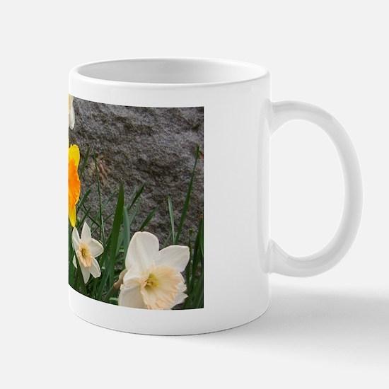 l&s Mugs