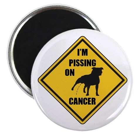 Piss On Cancer Magnet