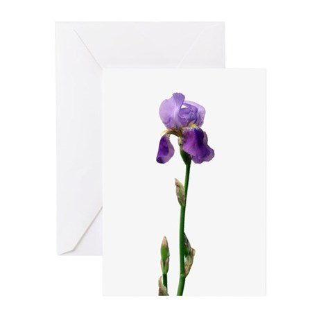 Purple Iris Faux Pastel Greeting Cards (Package of