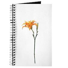 Orange Lily Faux Pastel Journal