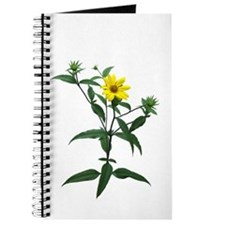 African Daisy Faux Pastel Journal
