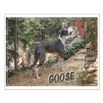 Goose Small Poster