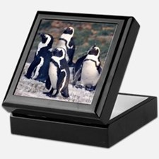 Penguin Parade Keepsake Box