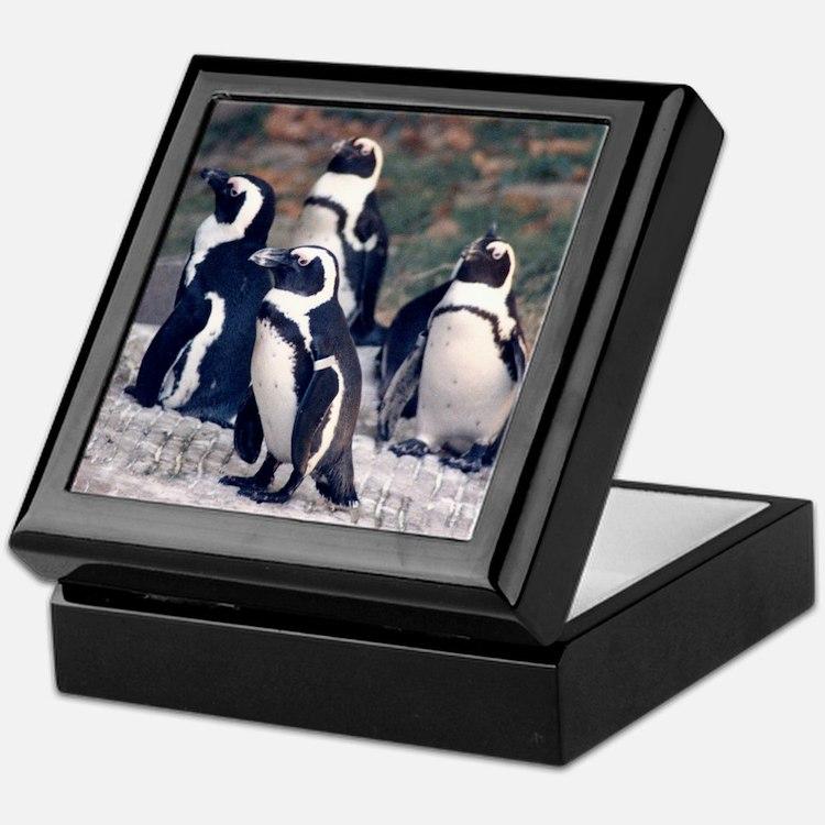 Penguin Parade Keepsake Box
