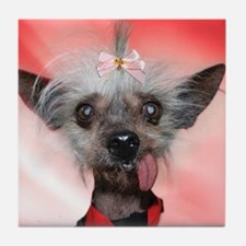 Cute Chinese crested dog Tile Coaster