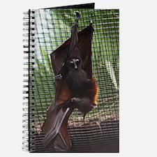 Journal-Bat