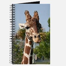 Journal-Giraffe