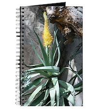 Journal-Scenery (Cactus)