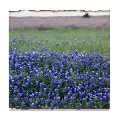 Blue Bonnets Tile Coaster