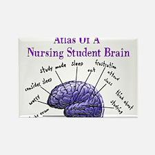 Nursing Student X Rectangle Magnet (10 pack)