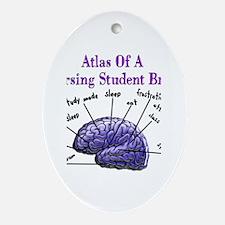 Nursing Student X Ornament (Oval)