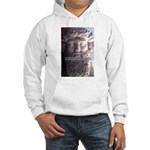 Greek Philosophy Plato Hooded Sweatshirt