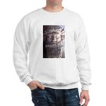 Greek Philosophy Plato Sweatshirt