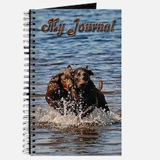 Chocolate Labs Journal