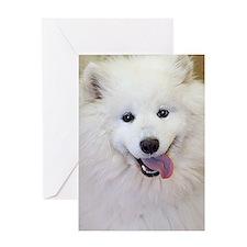 Samoyed Greeting Card