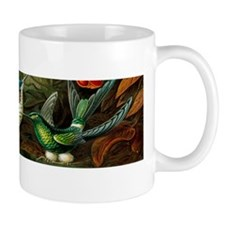Vintage Haeckel Hummingbirds Mug