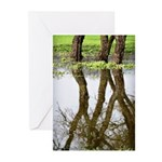 Reflecting Greeting Cards (Pk of 10)