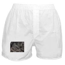 Cute Portuguese water dog Boxer Shorts