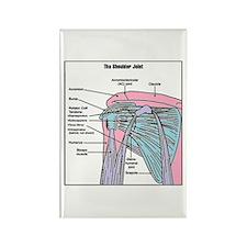 Shoulder Joint Rectangle Magnet