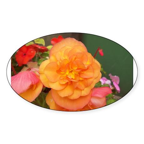 Orange Peony Sticker (Oval)