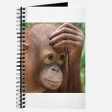 Orangutan Journal