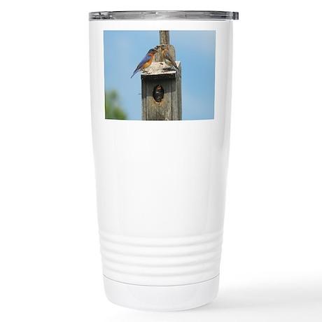 Bluebird Family Stainless Steel Travel Mug
