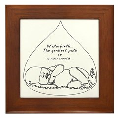 Waterbirth Framed Tile