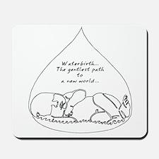 Waterbirth Mousepad