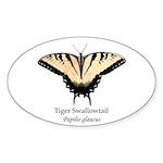Tiger Swallowtail Sticker (Oval 50 pk)