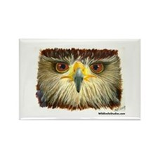 Redtailed Hawk Rectangle Magnet