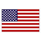 American flag 50 Pack