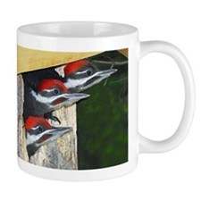3 Pileated Woodpecker babies Mug