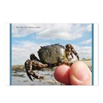 Asian Shore Crab Postcards (Package of 8)
