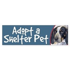 Adopt ShelterPet-Bluetick Coonhound BumperBumper Sticker