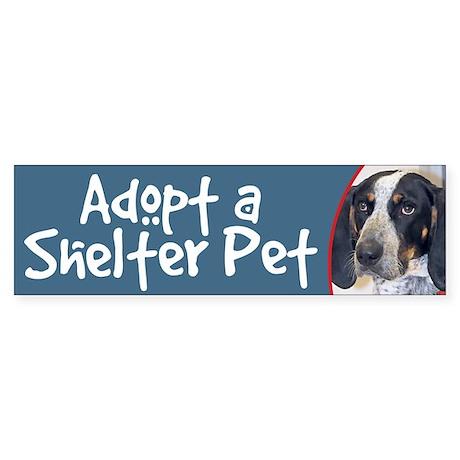 Adopt ShelterPet-Bluetick Coonhound BumperSticker