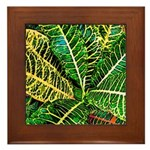 Audubon Greens Framed Tile