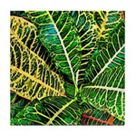 Audubon Greens Tile Coaster