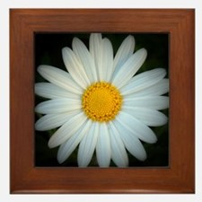 Framed Daisy Tile