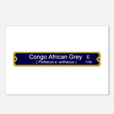 Congo Grey Sci name Postcards (Package of 8)