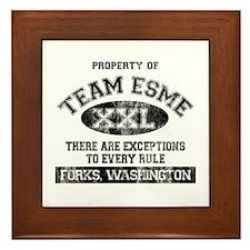 Team Esme Framed Tile