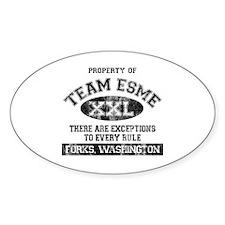 Team Esme Decal
