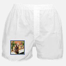 AT THE SPA Boxer Shorts