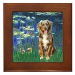 Lilies5-AussieShep (#5) Framed Tile
