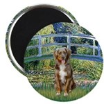 Bridge-Aussie Shep (#5) Magnet